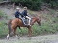 Pferde am Koindy See, Kasachstan
