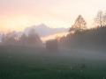 Stiller Ort im Nebel