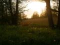Sonnenuntergang an der Czarna Hancza