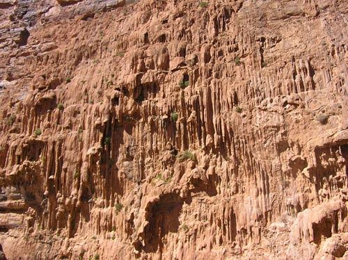 Tropfsteine an der Felswand